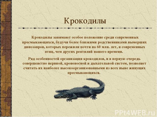 Крокодилы Крокодилы занимают особое положение среди современных пресмыкающихся, будучи более близкими родственниками вымерших динозавров, которых пережили почти на 60 млн. лет, и современных птиц, чем других рептилий нашего времени. Ряд особенностей…
