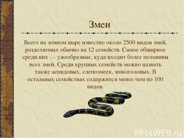 Змеи Всего на земном шаре известно около 2500 видов змей, разделяемых обычно на 12 семейств. Самое обширное среди них — ужеобразные, куда входит более половины всех змей. Среди крупных семейств можно назвать также аспидовых, слепозмеек, ямкоголовых.…