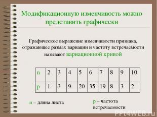Модификационную изменчивость можно представить графически Графическое выражение