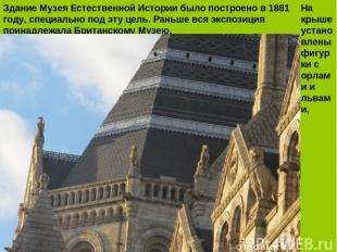 Здание Музея Естественной Истории было построено в 1881 году, специально под эту