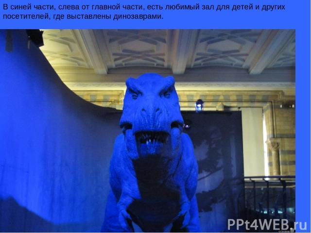 В синей части, слева от главной части, есть любимый зал для детей и других посетителей, где выставлены динозаврами.