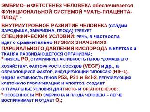 """ЭМБРИО- и ФЕТОГЕНЕЗ ЧЕЛОВЕКА обеспечивается ФУНКЦИОНАЛЬНОЙ СИСТЕМОЙ """"МАТЬ-ПЛАЦЕН"""