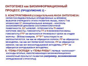 ОНТОГЕНЕЗ как БИОИНФОРМАЦИОННЫЙ ПРОЦЕСС (ПРОДОЛЖЕНИЕ 2) - 5. КОНСТРУКТИВНАЯ (СОЗ