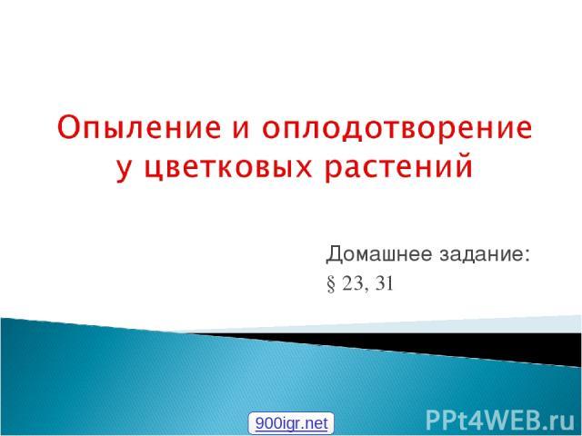 Домашнее задание: § 23, 31 900igr.net