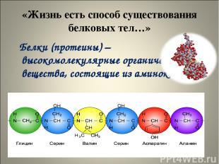 «Жизнь есть способ существования белковых тел…» Белки (протеины) – высокомолекул