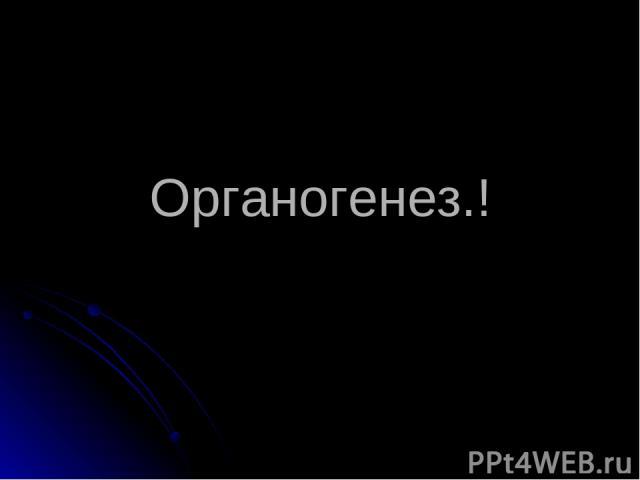 Органогенез.!