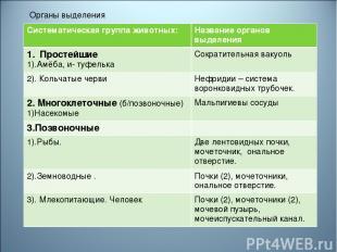 * Органы выделения животных: Систематическая группа животных: Название органов в