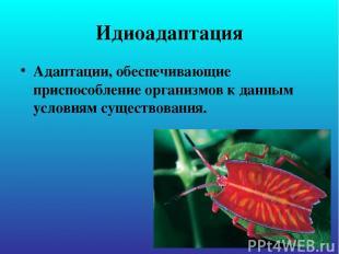 Идиоадаптация Адаптации, обеспечивающие приспособление организмов к данным услов