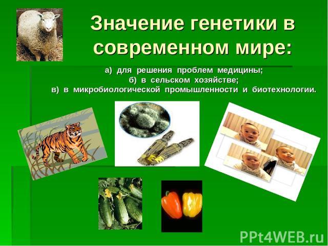 Значение генетики в современном мире: а) для решения проблем медицины; б) в сельском хозяйстве; в) в микробиологической промышленности и биотехнологии.
