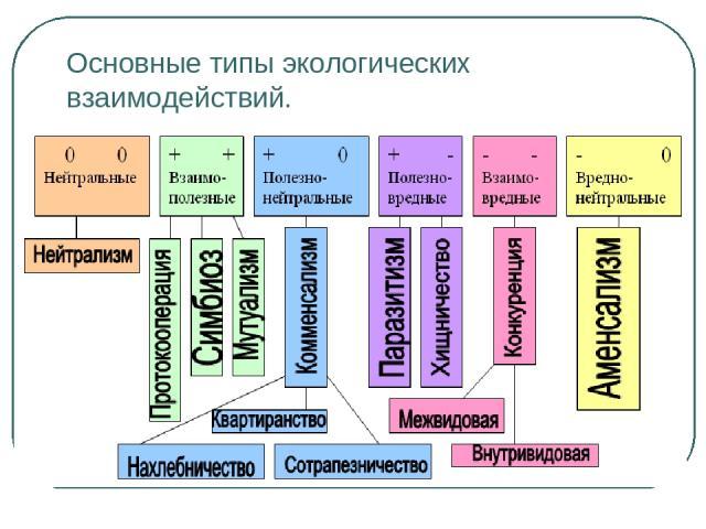 Основные типы экологических взаимодействий.