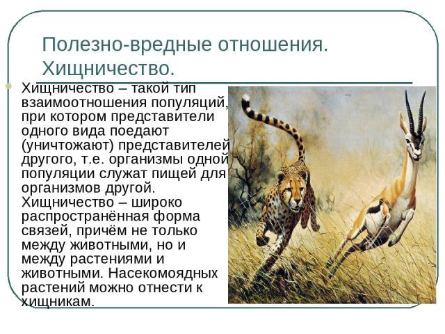 Полезно-вредные отношения. Хищничество. Хищничество – такой тип взаимоотношения популяций, при котором представители одного вида поедают (уничтожают) представителей другого, т.е. организмы одной популяции служат пищей для организмов другой. Хищничес…