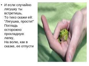 """И если случайно лягушку ты встретишь, То тихо скажи ей: """"Лягушка, прости!"""" Погла"""