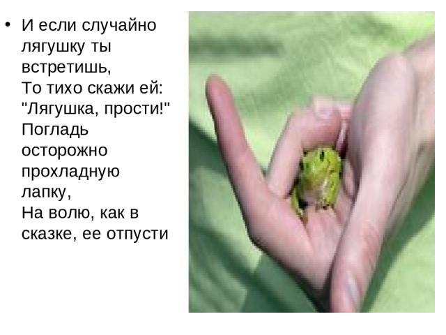 И если случайно лягушку ты встретишь, То тихо скажи ей: