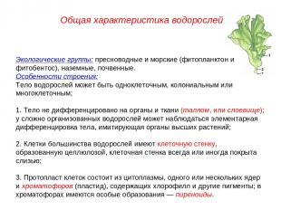Экологические группы: пресноводные и морские (фитопланктон и фитобентос), наземн