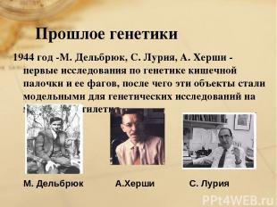 Прошлое генетики 1944 год -М. Дельбрюк, С. Лурия, А. Херши - первые исследования