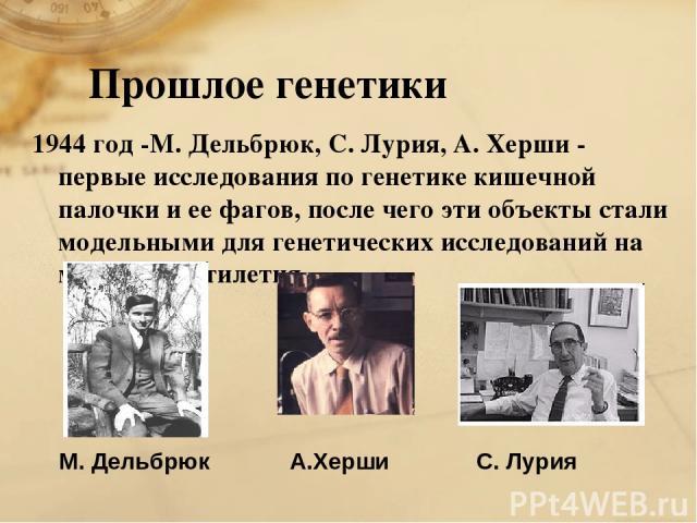 Прошлое генетики 1944 год -М. Дельбрюк, С. Лурия, А. Херши - первые исследования по генетике кишечной палочки и ее фагов, после чего эти объекты стали модельными для генетических исследований на многие десятилетия. М. Дельбрюк С. Лурия А.Херши