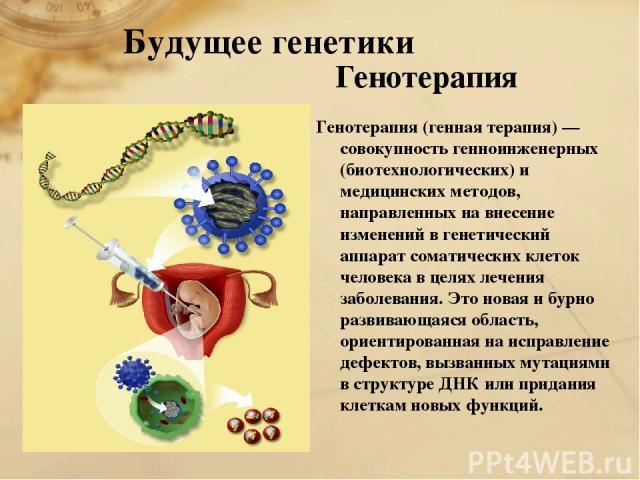 Будущее генетики Генотерапия Генотерапия (генная терапия) — совокупность генноинженерных (биотехнологических) и медицинских методов, направленных на внесение изменений в генетический аппарат соматических клеток человека в целях лечения заболевания. …