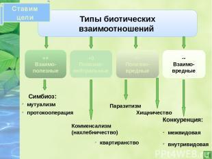 Типы биотических взаимоотношений ++ Взаимо- полезные +0 Полезно-нейтральные +- П