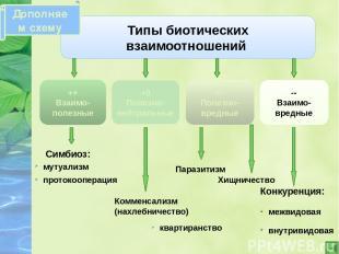 Источники информации: 1.Садкина В.И., Изучение основных понятий и объяснение нов