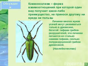 Паразитизм – такие биотические отношения при которых организмы одного вида (пара