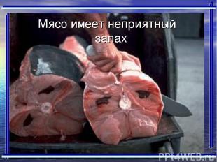 Мясо имеет неприятный запах