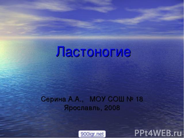 Ластоногие Серина А.А., МОУ СОШ № 18 Ярославль, 2008 900igr.net