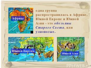 * одна группа распространилась в Африке, Южной Европе и Южной Азии - это обезьян