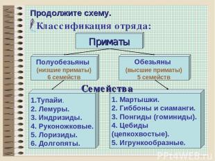 * Продолжите схему. Классификация отряда: Обезьяны (высшие приматы) 5 семейств П
