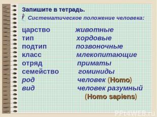 * Запишите в тетрадь. Систематическое положение человека: царство животные тип х