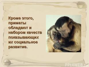 * Кроме этого, приматы обладают и набором качеств показывающих их социальное раз