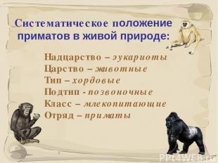 * Систематическое положение приматов в живой природе: Надцарство – эукариоты Цар
