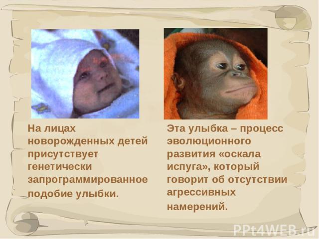 * На лицах новорожденных детей присутствует генетически запрограммированное подобие улыбки. Эта улыбка – процесс эволюционного развития «оскала испуга», который говорит об отсутствии агрессивных намерений.