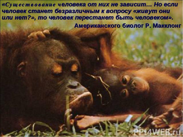 * «Существование человека от них не зависит… Но если человек станет безразличным к вопросу «живут они или нет?», то человек перестанет быть человеком». Американского биолог Р. Макклонг