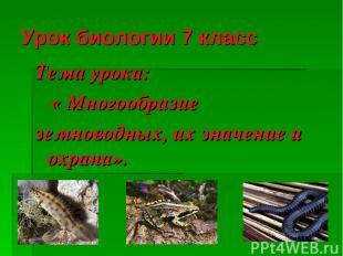 Урок биологии 7 класс Тема урока: « Многообразие земноводных, их значение и охра