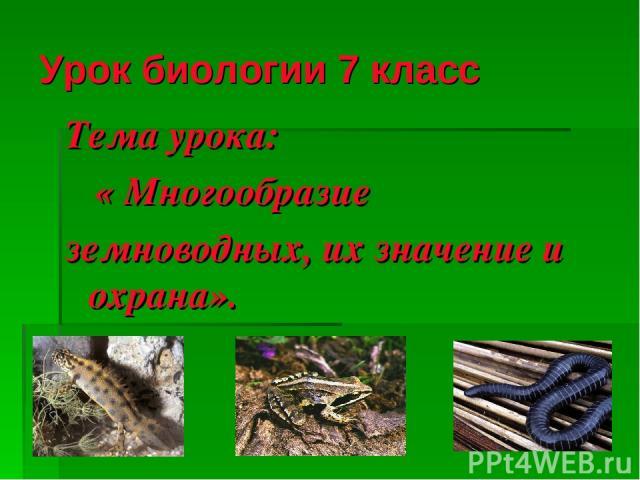 Урок биологии 7 класс Тема урока: « Многообразие земноводных, их значение и охрана».