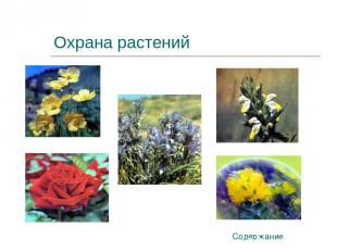 Охрана растений Содержание