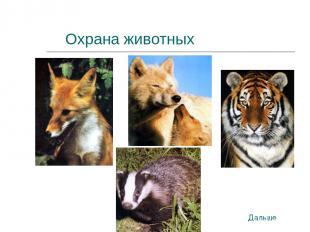 Охрана животных Дальше
