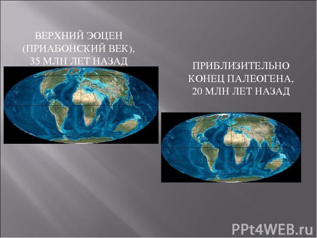 ВЕРХНИЙ ЭОЦЕН (ПРИАБОНСКИЙ ВЕК), 35 МЛН ЛЕТ НАЗАД ПРИБЛИЗИТЕЛЬНО КОНЕЦ ПАЛЕОГЕНА, 20 МЛН ЛЕТ НАЗАД