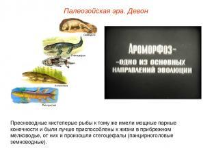 Палеозойская эра. Девон Пресноводные кистеперые рыбы к тому же имели мощные парн