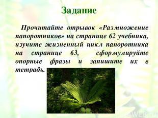 Задание Прочитайте отрывок «Размножение папоротников» на странице 62 учебника, и
