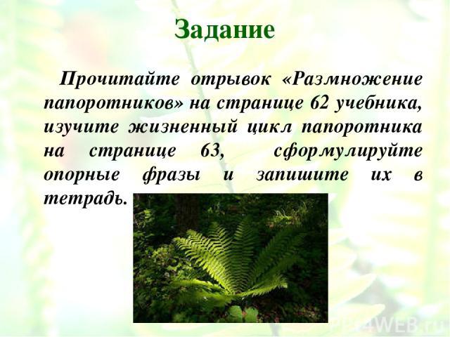 Задание Прочитайте отрывок «Размножение папоротников» на странице 62 учебника, изучите жизненный цикл папоротника на странице 63, сформулируйте опорные фразы и запишите их в тетрадь.