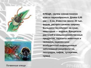 КЛЕЩИ, группа членистоногих класса паукообразных. Длина 0,05 мм — 3 см. Известно