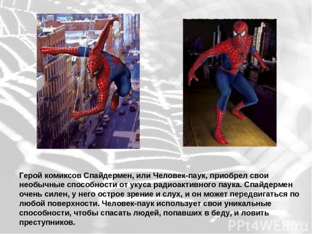 Герой комиксов Спайдермен, или Человек-паук, приобрел свои необычные способности от укуса радиоактивного паука. Спайдермен очень силен, у него острое зрение и слух, и он может передвигаться по любой поверхности. Человек-паук использует свои уникальн…
