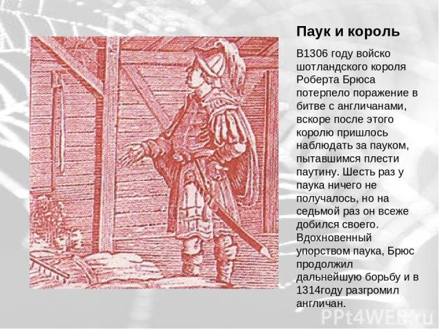 Паук и король В1306 году войско шотландского короля Роберта Брюса потерпело поражение в битве с англичанами, вскоре после этого королю пришлось наблюдать за пауком, пытавшимся плести паутину. Шесть раз у паука ничего не получалось, но на седьмой раз…
