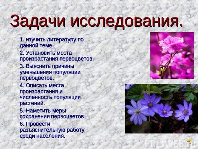 Задачи исследования. 1. изучить литературу по данной теме. 2. Установить места произрастания первоцветов. 3. Выяснить причины уменьшения популяции первоцветов. 4. Описать места произрастания и численность популяции растений. 5. Наметить меры сохране…