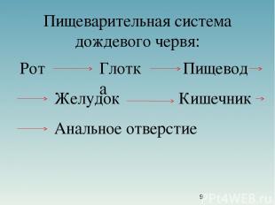 Пищеварительная система дождевого червя: Рот Глотка Пищевод Желудок Кишечник Ана