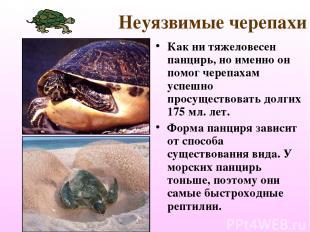 Неуязвимые черепахи Как ни тяжеловесен панцирь, но именно он помог черепахам усп