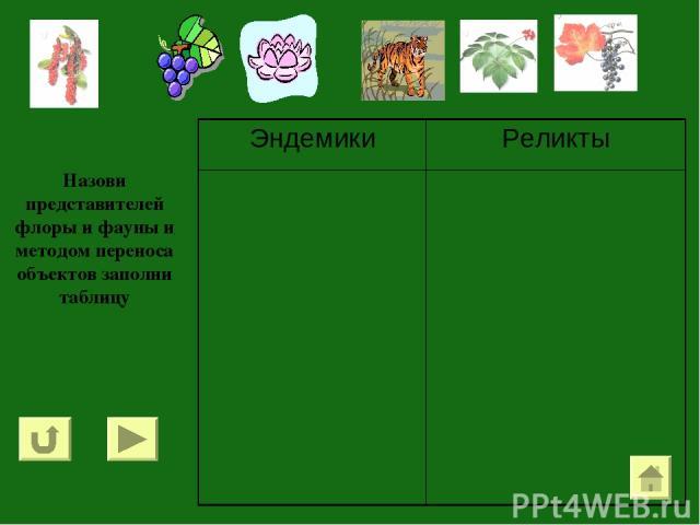 Назови представителей флоры и фауны и методом переноса объектов заполни таблицу Эндемики Реликты
