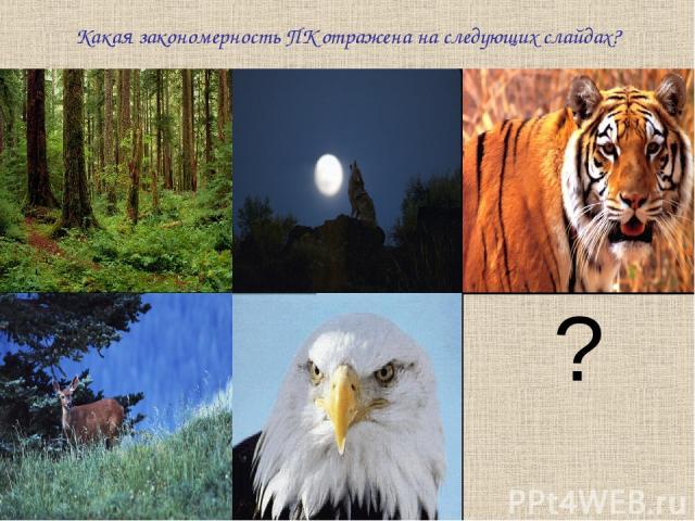 Какая закономерность ПК отражена на следующих слайдах? ?
