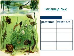 Таблица №2 растения животные